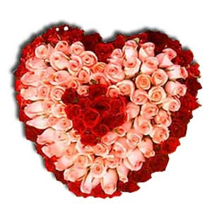 100 Red n Pink Roses Heart Shape Arrangement