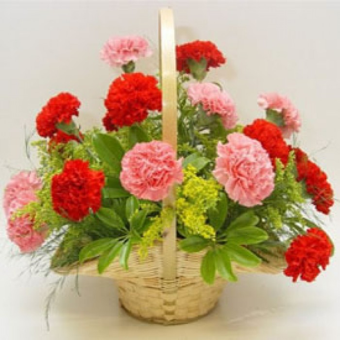 12 Red and Pink Carnations Basket