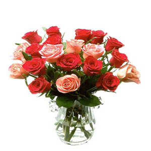 20 Red and Pink Roses in Vase
