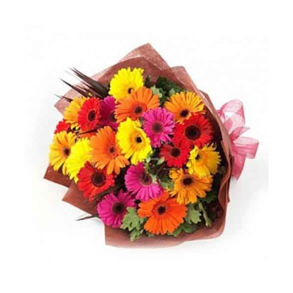 24 Mix Gerberas Bunch