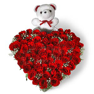 40 Red Roses in Heart Shape n Teddy
