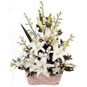 Basket of White lillies