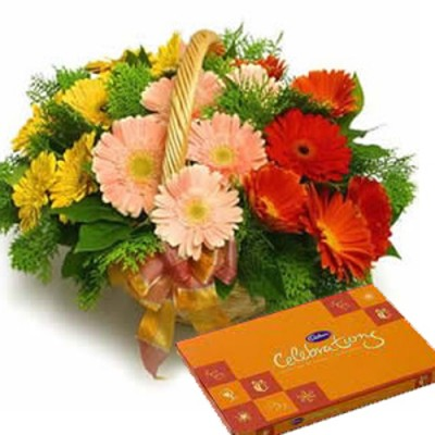 Mixed Gerberas Basket with Cadbury Celebration