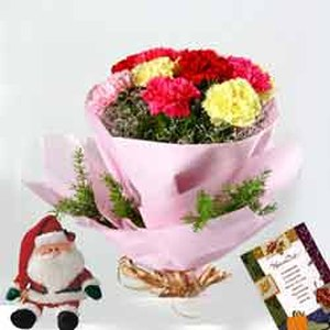 Carnations with Santa