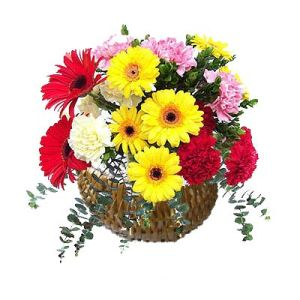 Basket of 25 Carnations n Gerberas