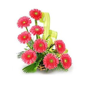 Basket of 12 Pink Gerberas