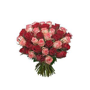 Special Hand Bunch of Pink n Red Roses