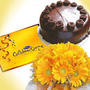 Gerbera Flowers Choco Celebration