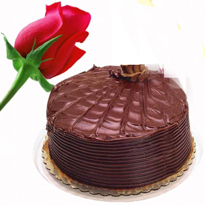 1Kg Chocolate Cake with Single Red Rose