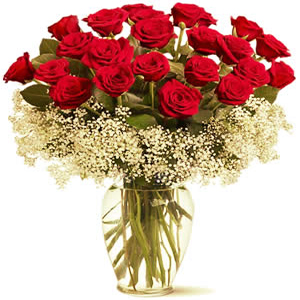 20 Red Long Stem Roses in Vase