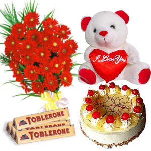 Gerberas with Chocolates Cake and Teddy