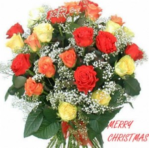 X mas Mixed Rose Bunch