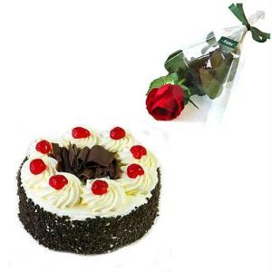 Single Red Rose With 1/2Kg Black Forest Cake