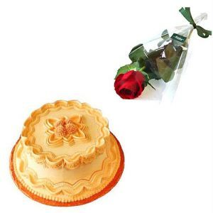 Cake with Single Red Rose n Teddy