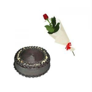 1/2Kg Chocolate Truffle Cake n One Rose