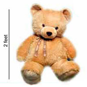 Jumbo Teddy Bear 2ft