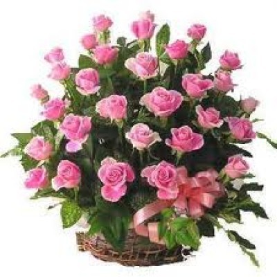 Romantic Basket of 50 Pink Roses