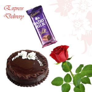 Single Rose With Dairy Milk Silk n 1/2Kg Chocolate
