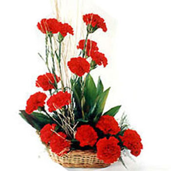 20 Red Carnations Basket