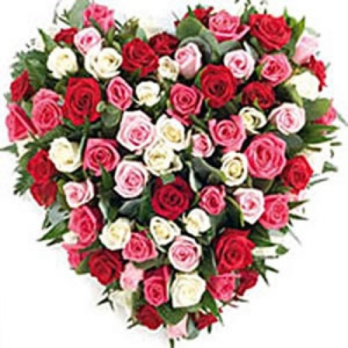 50 Multi Color Heart Shaped Roses
